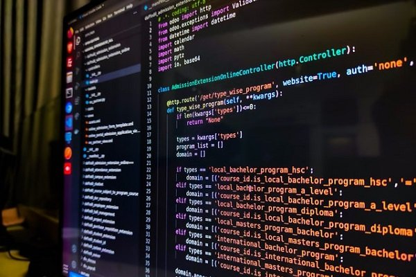What Does a Software Developer Do A Deep Dive into the Career